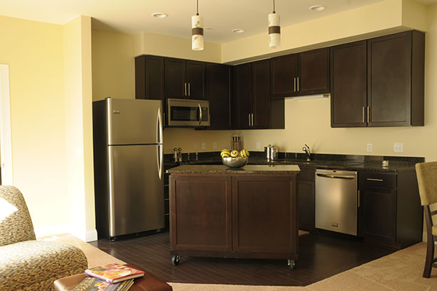 /Portals/2/UltraMediaGallery/852/69/thumbs/3.T2-Townhome-Kitchen.jpg